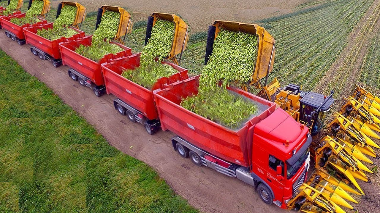 World Modern Corn Grain Excavator Harvester Agriculture Technology Tractor Loader Truck Machines - The Perfect System