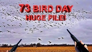 73 Birds in 30 Minutes!!! My Best Day Duck and Goose Hunting 2017