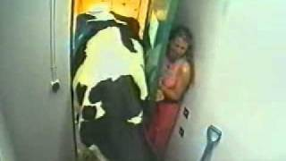 Girl scared from cow!