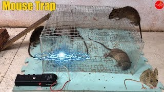Electric Mouse Trap/Best Mouse Trap Homemade With Battery 12V Easy Saving A Lot Of Rat !